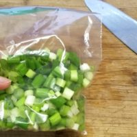 You can freeze green onion like this!